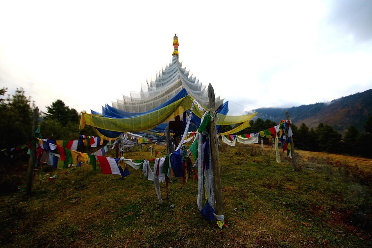 where to goh   a lodge of serenity gangtey goenpa lodge